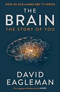 Books Paul recommends: The Brain